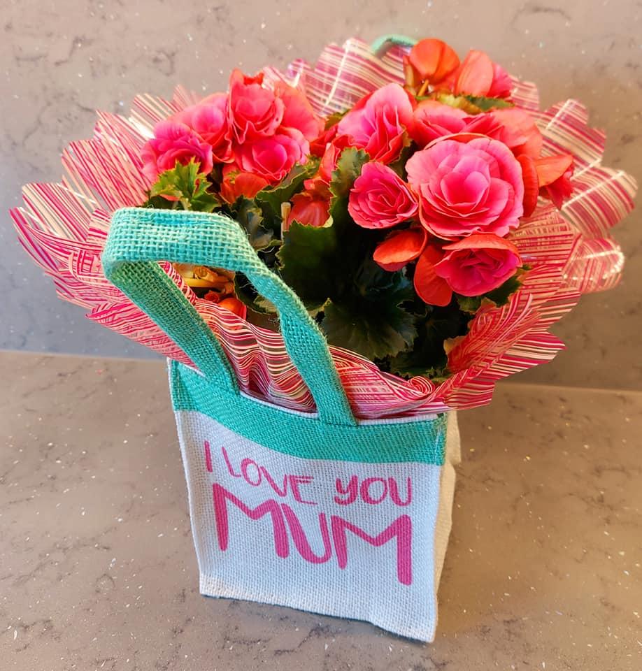 *Begonia Gift Bag