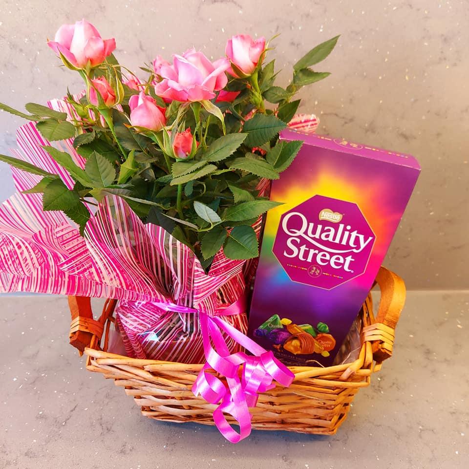 Plant gift basket